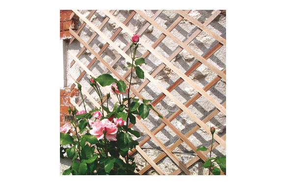 Celosia extensible madera trelliwood 1 x 2 m
