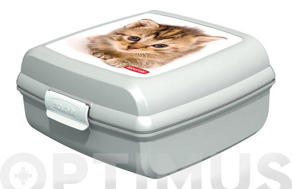 Contenedor snap box  m  gatos 02276-p73-02