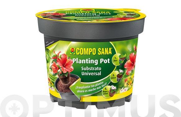 Maceta plantacion ' planting pot ' ø 22 cm