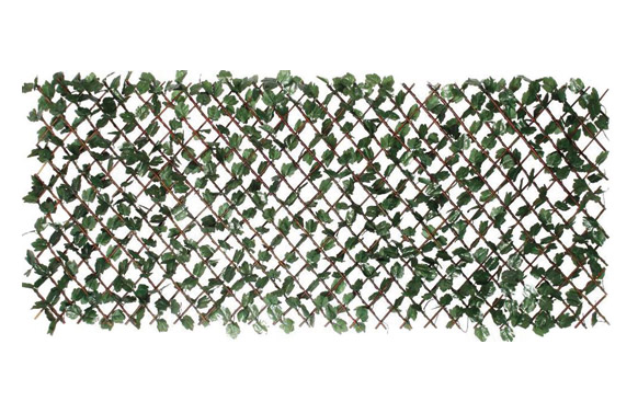 Celosia mimbre extensible con hojas 1 x 2 m wickgreen